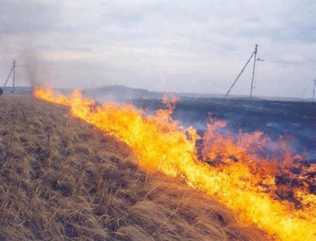 Лише за тиждень на Волині ліквідували 29 пожеж сухостою