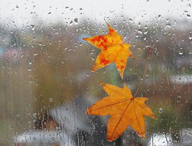 Якою буде погода у Луцьку та області 10 листопада